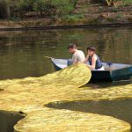 Floating Golden (F)oil. Artists: Tanya Atanasova & Thomas van Walle
